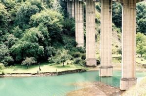 The bridge,
