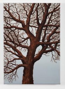 Tree 3,
